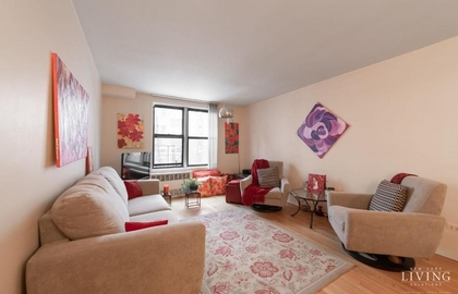 150 east 27th street 3g 01 11 2019 livingroom jpg