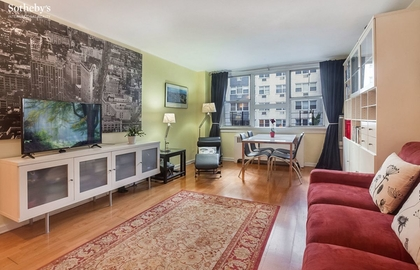 240 east 35th street 2b livingroom jpg